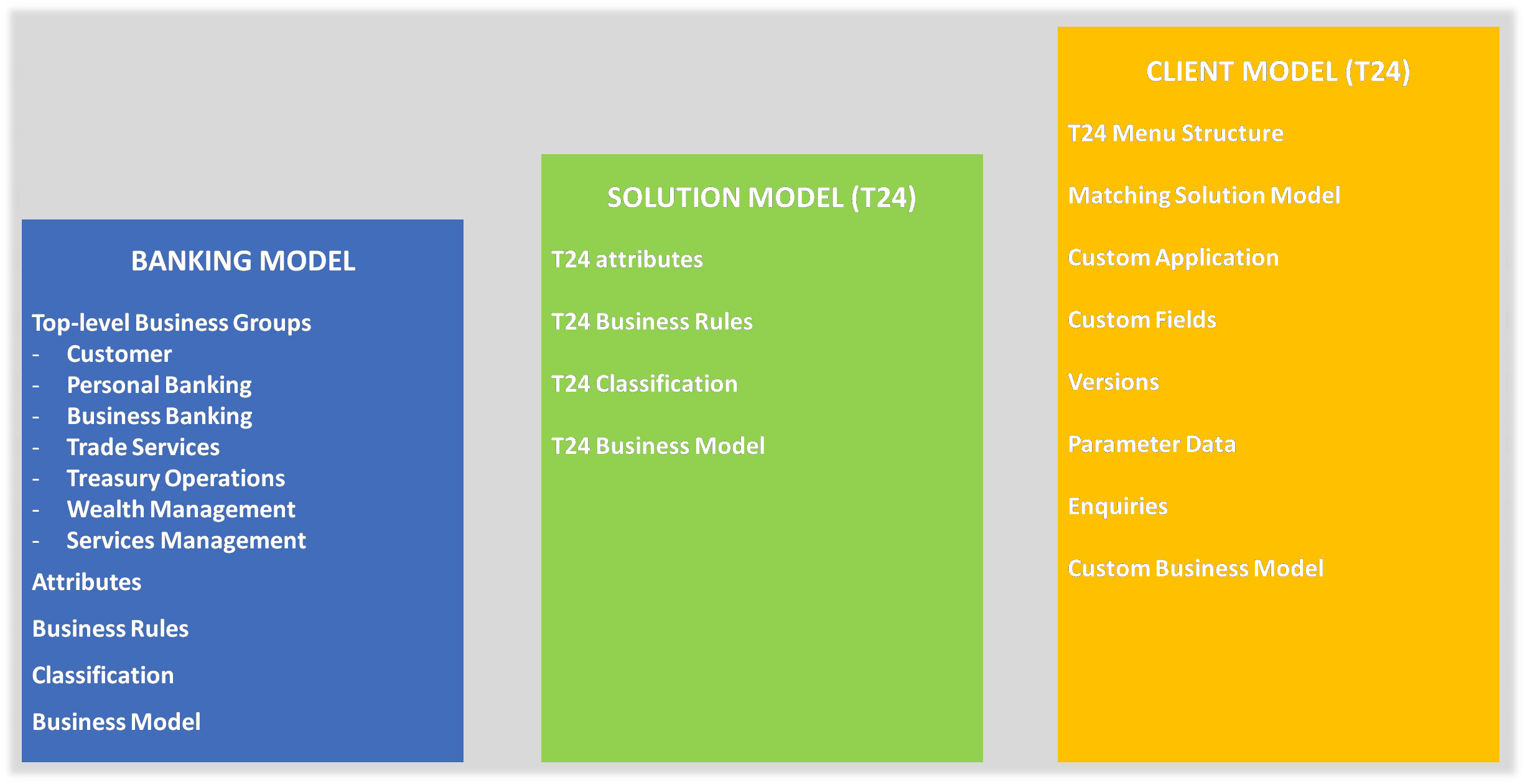 Solution Specific Models for Temenos T24