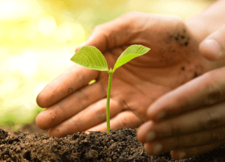 Maveric CSR Policy Brochure